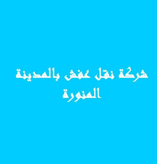 ارخص و افضل شركات نقل العفش بالمدينة المنورة